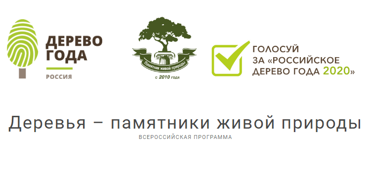 naczionalnyj-konkurs-rossijskoe-derevo-goda-2020